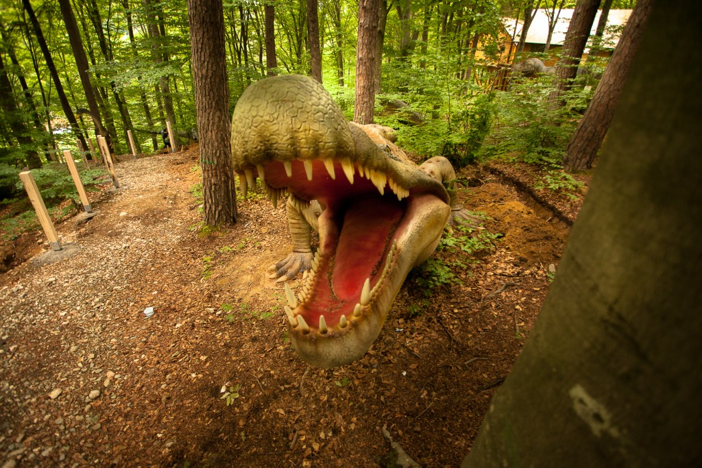 Dino 5